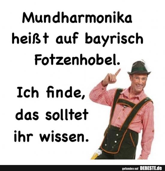 Mundharmonika Heisst Auf Bayrisch Fotzenhobel Lustige Bilder