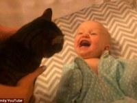 Este video conmovedor captura el deleite que siente esta bebé al ver a su gato dentro de su cuna.
