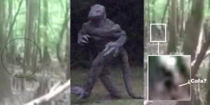 Nuevas imágenes del Hombre Lagarto de Carolina del Sur