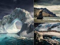 Belleza extrema: Imágenes impresionantes de un viaje a través de la Antártida
