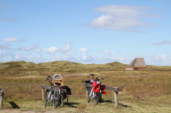 PAYS BAS: L'île de Texel
