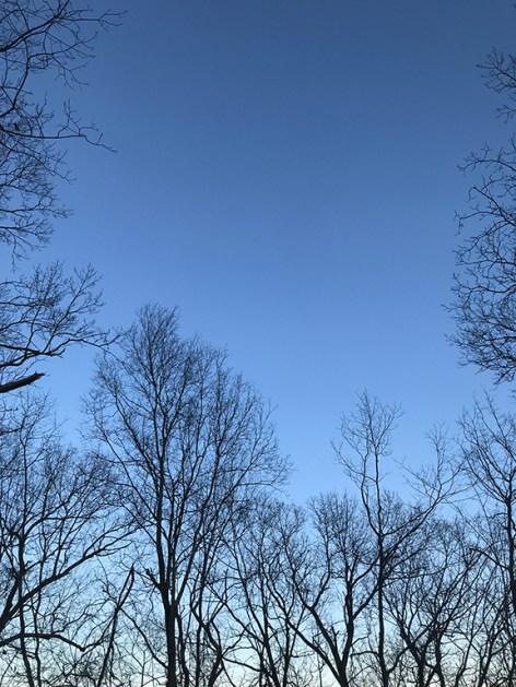 February light