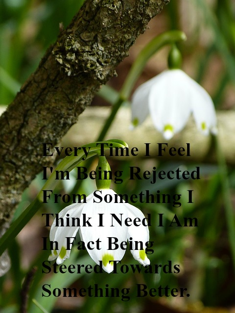 every-time-i-feel-im-being-rejected-from-something-i-think-i-need-i-am-in-fact-being-steered-towards-something-better