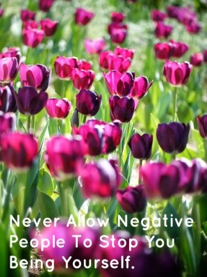 never-allow-negative-people-to-stop-you-being-yourself