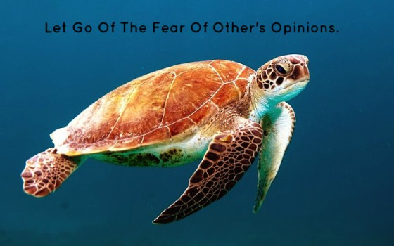 Let Go Of The Fear Of Other's Opinions.