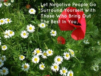 let-negative-people-go-surround-yourself-with-those-who-bring-out-the-best-in-you