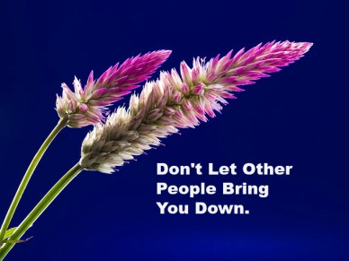 Don't Let Other People Bring You Down.