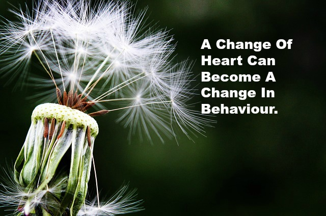 A Change Of Heart Can Become A Change In Behaviour.