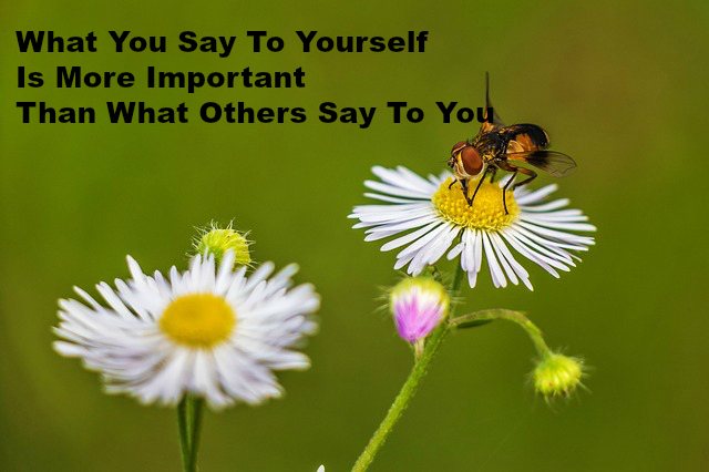 What You Say To Yourself Is More Important Than What Others Say To You