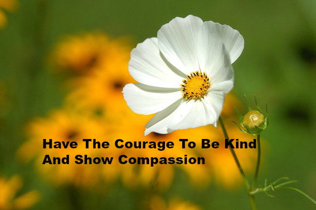 Have The Courage To Be Kind And Show Compassion