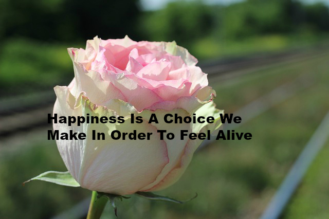 Happiness Is A Choice We Make In Order To Feel Alive