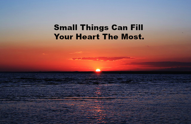 Small Things Can Fill Your Heart The Most.
