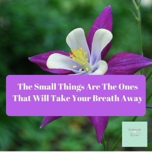 The small things are the ones that will take your breath away