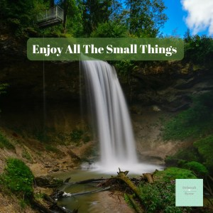 Enjoy All The Small Things DBpsychology 15