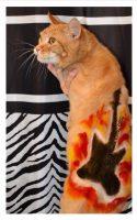 Rocker by Deborah Hansen, CFMG, CFCG, creative cat grooming