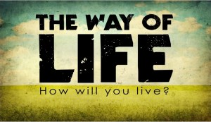 Proverbs 11 way-of-life-image