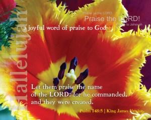 Psalm 148 5