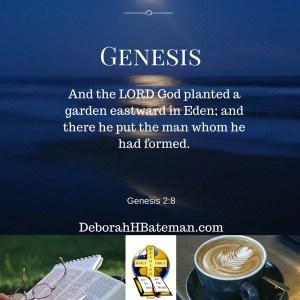 Genesis 2 8