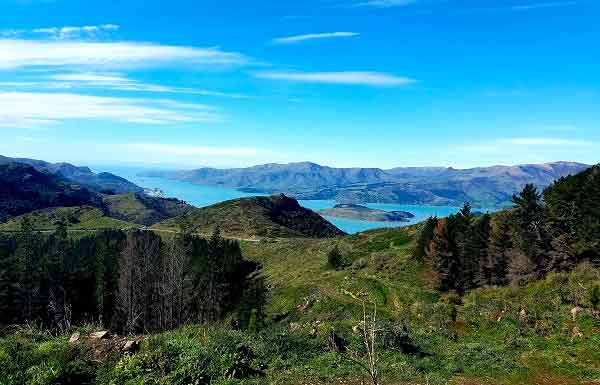 hikes in New Zealand include beautiful scenery