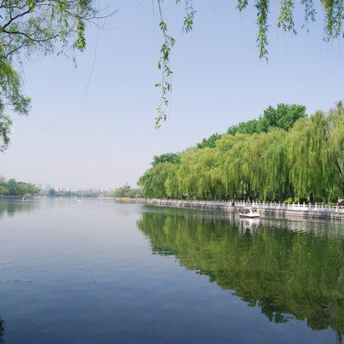 Old Beijing and Willows