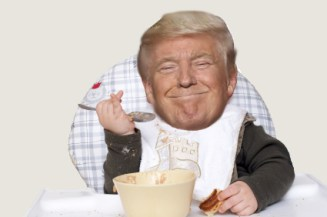 Trump High Chair