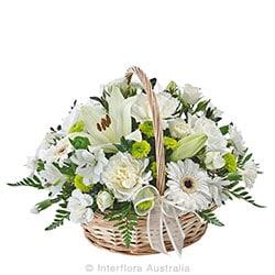 COMFORT Petite sympathy basket suitable for home or service AUS 834