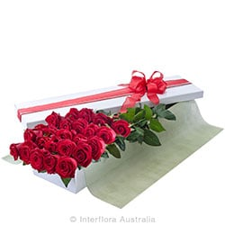 EVERLASTING LOVE Presentation box of 24 long stemed roses AUS 785 (red) AUS 786 (pink) AUS 787 (yellow)