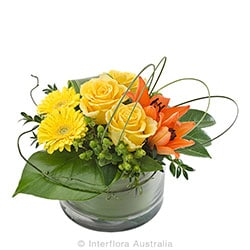 RHAPSODY Modern arrangement in low glass vase AUS 716