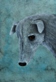 Galgo Spanish Greyhound painting