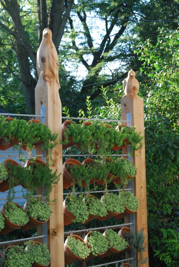 vertical vegetable garden #1