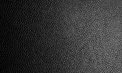 tela-de-cuero-negro