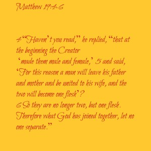 mathew19 marriage scripture
