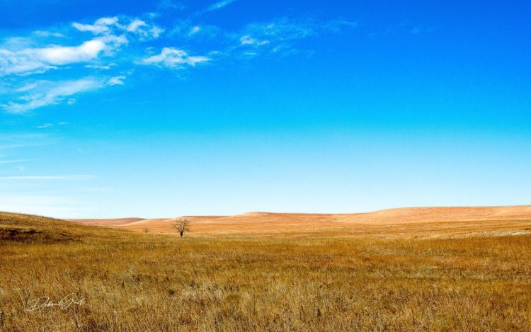 landscape photography fine art prints flint hills chase county kansas