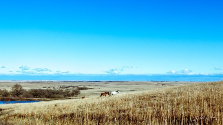 early spring in march flint hills blue skies