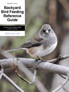 debra gail backyard bird feeding reference guide photo