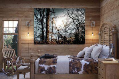 foggy woodlands debra gail photography