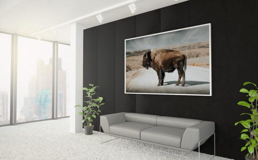 interior designers bison wall art debra gail interior design office