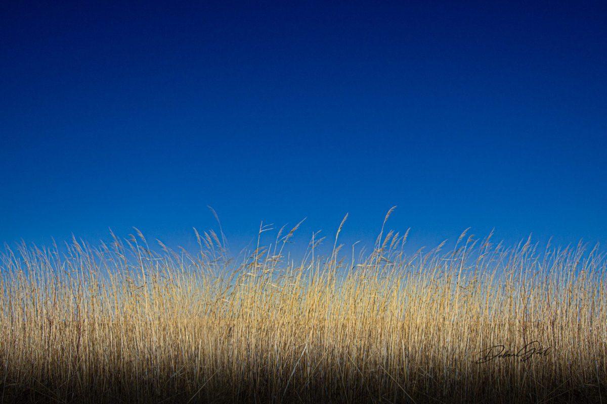 blue wall art flint hills photography Tallgrass Prairie best Flint Hills Debra Gail