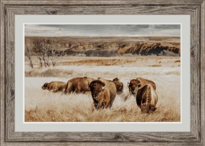 framed bison herd wall art