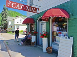 Crazy Cat Lady Store!