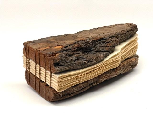 Driftwood 11