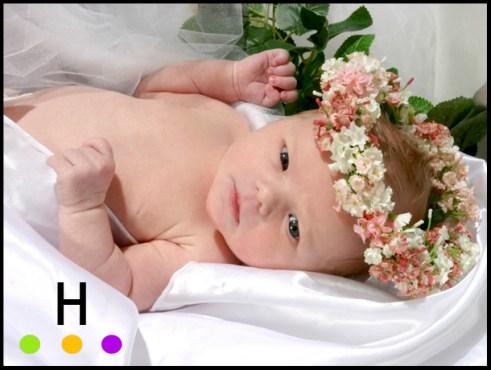Baby photography in Red Deer, Alberta.