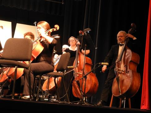 The MSO's very skilled bassists