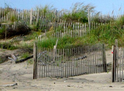 BeachDune