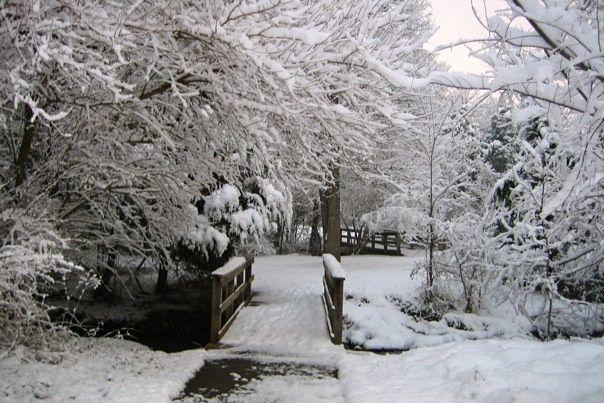 SnowyRunTwoBridges