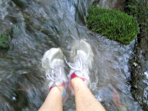 HikingBigSpringBranchSelfie
