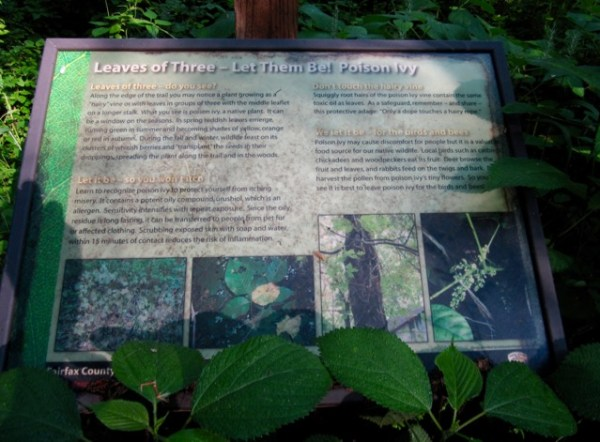 LakeFairfaxTrailRunPoisonIvySign