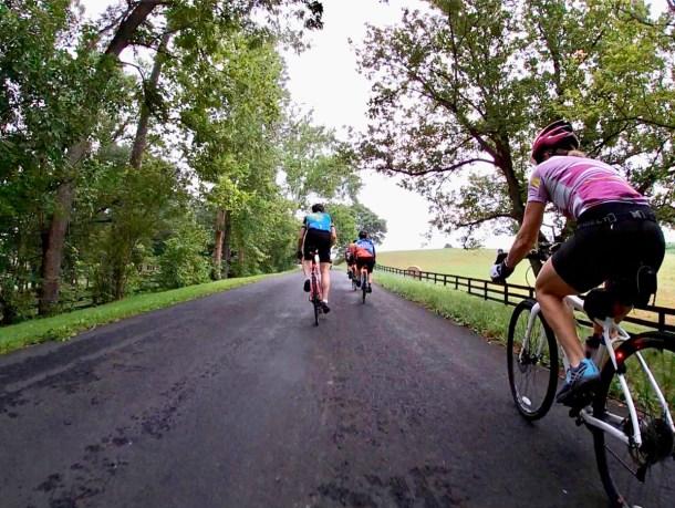 Fauquier and Loudoun Counties Bike Tour
