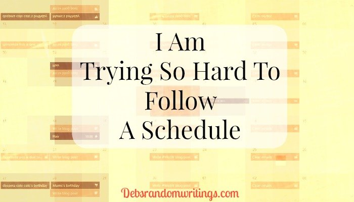 follow a schedule