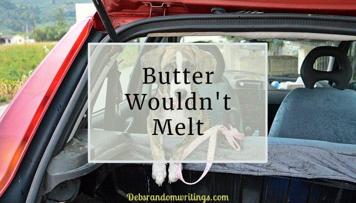 butter wouldn't melt
